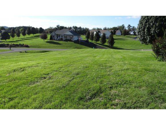 0 County Cork, Bristol, VA 24202 (MLS #380325) :: Highlands Realty, Inc.