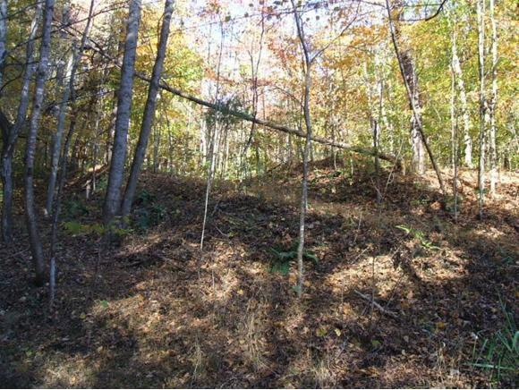 15329 Anderson Dr., Mendota, VA 24270 (MLS #384383) :: Highlands Realty, Inc.