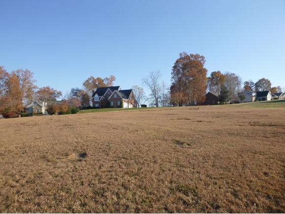 729 Harbor Point Drive Lot #8, Johnson City, TN 37601 (MLS #385200) :: Conservus Real Estate Group