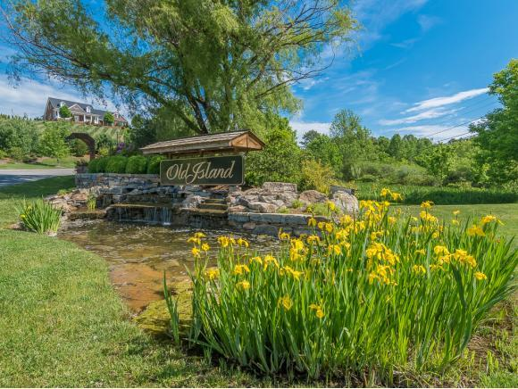 1045 Treetop Private Drive, Kingsport, TN 37664 (MLS #385352) :: Highlands Realty, Inc.