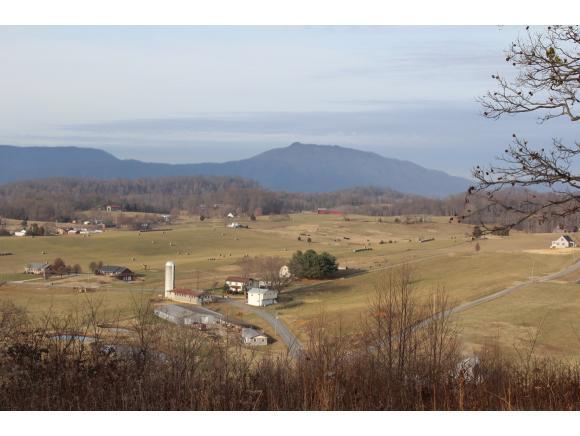 LT 50 Chimney Top Lane, Chuckey, TN 37641 (MLS #385952) :: Highlands Realty, Inc.