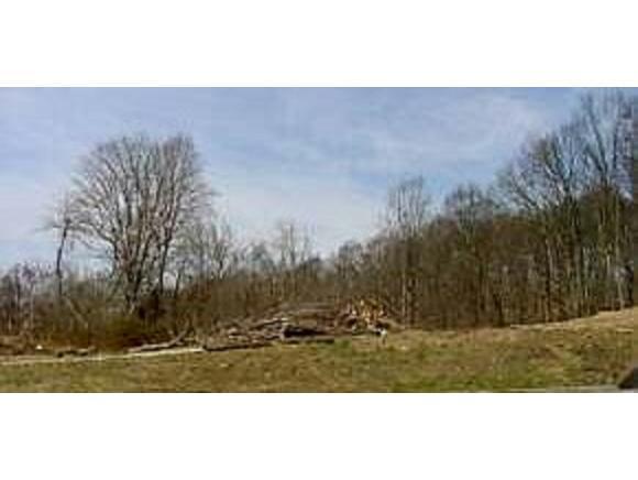 TBD Indiana, Bristol, VA 24201 (MLS #386763) :: Highlands Realty, Inc.