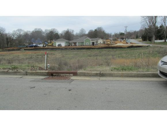 1408 East Church, Greeneville, TN 37745 (MLS #387062) :: Highlands Realty, Inc.