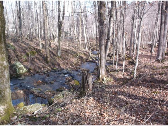 118 Tom's Creek Drive, Roan Mountain, TN 37687 (MLS #388001) :: Highlands Realty, Inc.