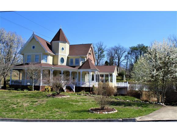 1005 Bard Lane, Kingsport, TN 37660 (MLS #388719) :: Highlands Realty, Inc.