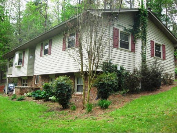 315 Fishery Loop Rd, Erwin, TN 37650 (MLS #391011) :: Griffin Home Group
