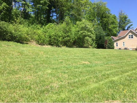 2354 Edinburgh Channel Rd, Kingsport, TN 37664 (MLS #391106) :: Highlands Realty, Inc.