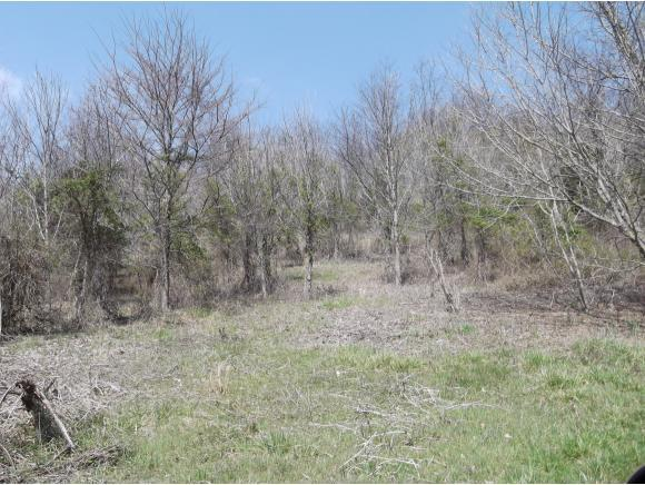 Lot 1 Charles Johnson Rd., Chuckey, TN 37641 (MLS #391638) :: Highlands Realty, Inc.