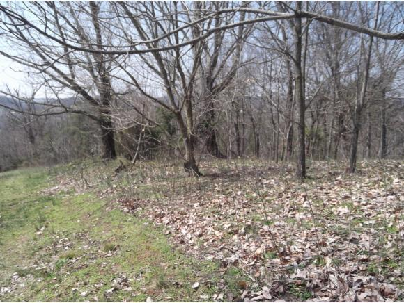 Lot 2 Charles Johnson Rd., Chuckey, TN 37641 (MLS #391640) :: Highlands Realty, Inc.