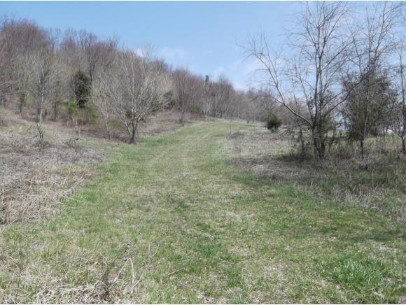 Lot 4 Charles Johnson Rd., Chuckey, TN 37641 (MLS #391641) :: Highlands Realty, Inc.