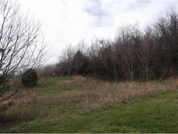 Lot 9 Charles Johnson Rd., Chuckey, TN 37641 (MLS #391644) :: Highlands Realty, Inc.