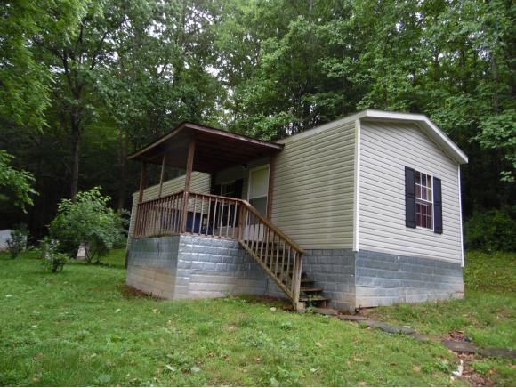 361 Bishop Hollow Dr, Big Stone Gap, VA 24219 (MLS #392122) :: Conservus Real Estate Group