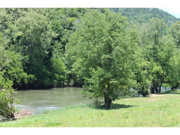 3981 Hwy 70 N, Kyles Ford, TN 37765 (MLS #392444) :: Griffin Home Group