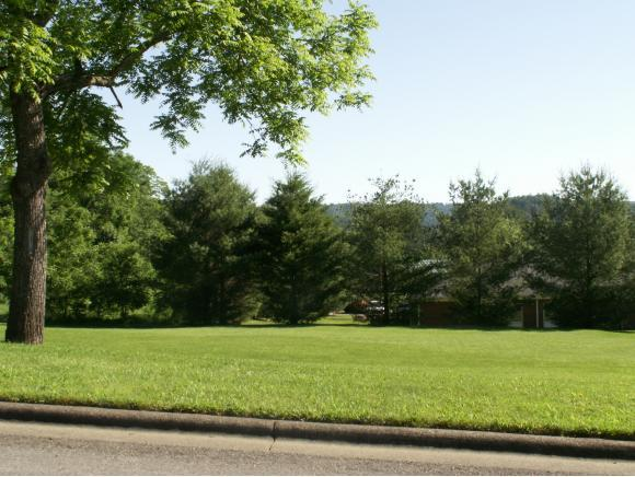 TBD Oakview Street, Mountain City, TN 37683 (MLS #392850) :: Griffin Home Group
