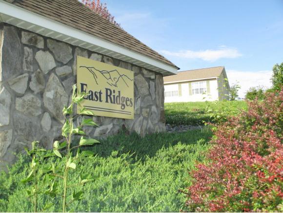 214 East Ridges Drive, Chuckey, TN 37641 (MLS #393162) :: Highlands Realty, Inc.