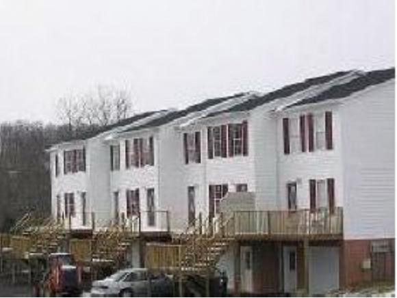 41 Tulip Grove Circle #2, Bristol, TN 37620 (MLS #393371) :: Griffin Home Group