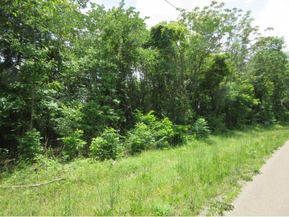 TBD Sycamore Shoals Drive, Elizabethton, TN 37643 (MLS #393397) :: Jim Griffin Team