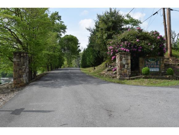 TBD Pine Point Circle, Butler, TN 37640 (MLS #393536) :: Highlands Realty, Inc.