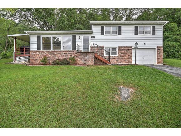 217 Mountain View Drive, Bristol, TN 37620 (MLS #393685) :: Highlands Realty, Inc.
