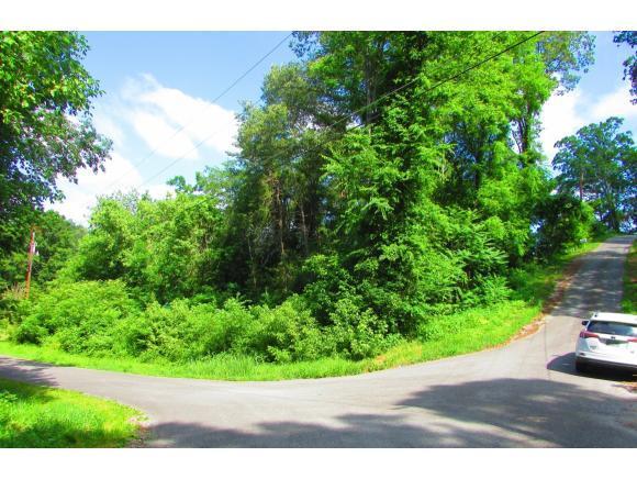 TBD Ernie Roberts Road, Rutledge, TN 37861 (MLS #393719) :: Highlands Realty, Inc.