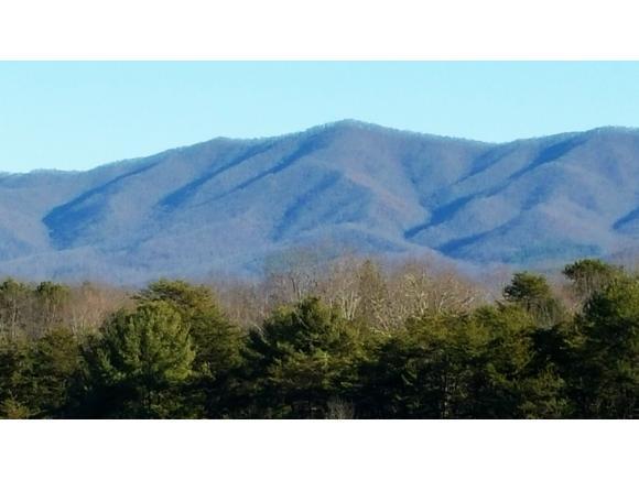 1166 Sky Wa Mo #0, Bluff City, TN 37618 (MLS #393745) :: Highlands Realty, Inc.