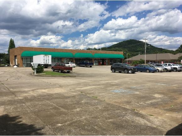 503 Princeton Rd. -, Johnson City, TN 37601 (MLS #393746) :: Conservus Real Estate Group