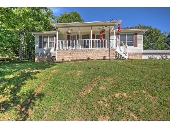 1121 Independence Avenue, Mount Carmel, TN 37645 (MLS #393757) :: Jim Griffin Team