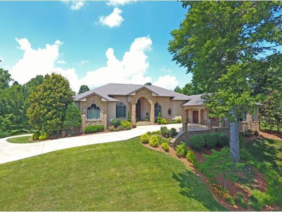 206 Hidden Forest Court, Jonesborough, TN 37659 (MLS #393768) :: Conservus Real Estate Group