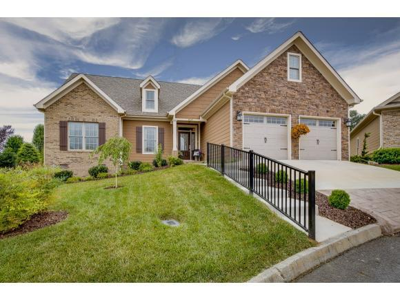 1407 Wimbledon Ct, Kingsport, TN 37664 (MLS #393992) :: Conservus Real Estate Group