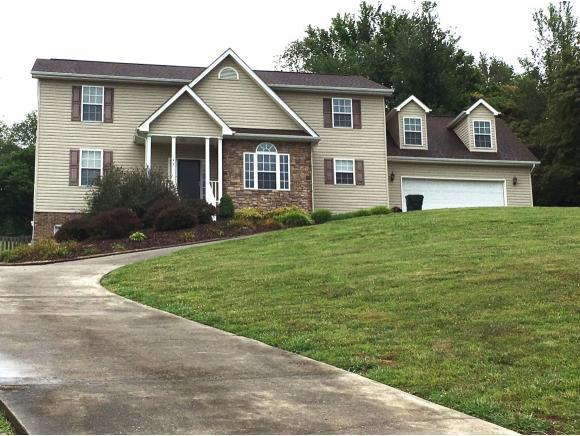 143 Austin Ridge Court, Gray, TN 37615 (MLS #394519) :: Conservus Real Estate Group