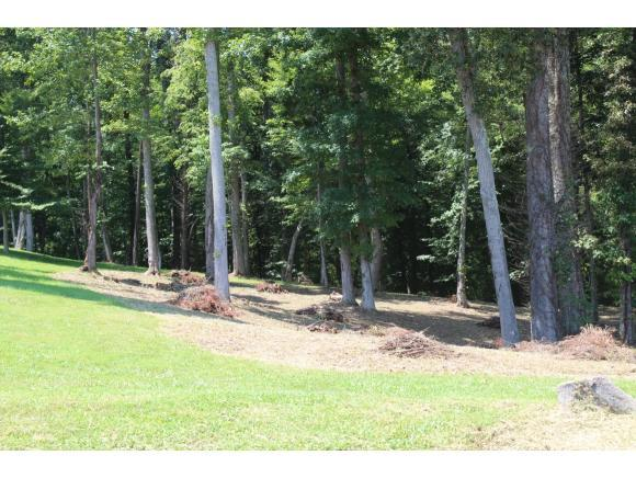 354 Old Stage Rd, Rogersville, TN 37857 (MLS #394609) :: Highlands Realty, Inc.