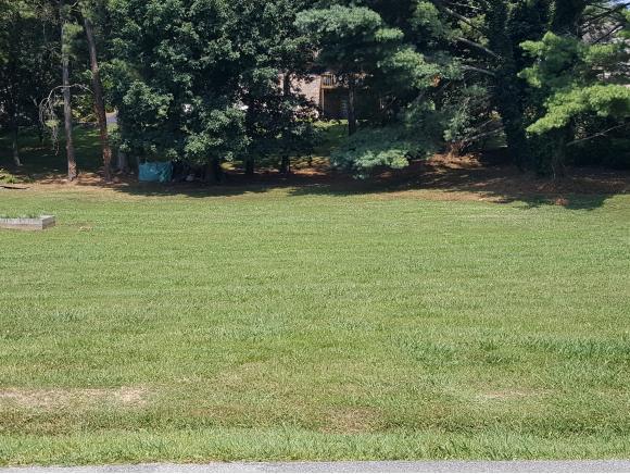 0 Judson Drive, Gray, TN 37615 (MLS #394625) :: Conservus Real Estate Group