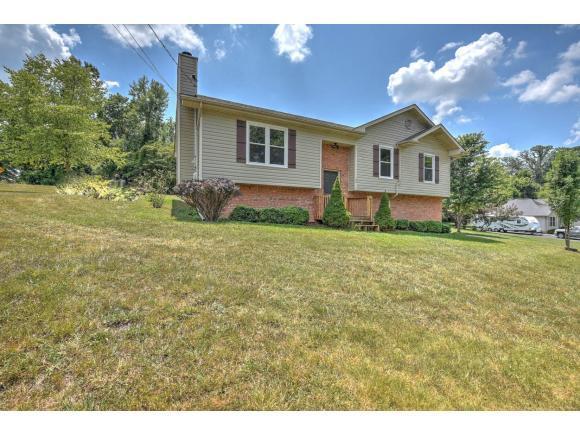 106 Pine Hill Drive, Gray, TN 37615 (MLS #394646) :: Conservus Real Estate Group