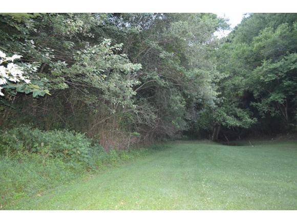 0 Mustang Street, Duffield, VA 24244 (MLS #395022) :: Highlands Realty, Inc.