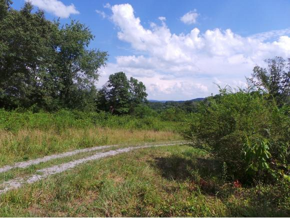 270 Old Stage Road, Rogersville, TN 37857 (MLS #395381) :: Highlands Realty, Inc.