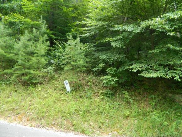 TR38 Five Oaks Circle, Whitesburg, TN 37891 (MLS #395384) :: Highlands Realty, Inc.