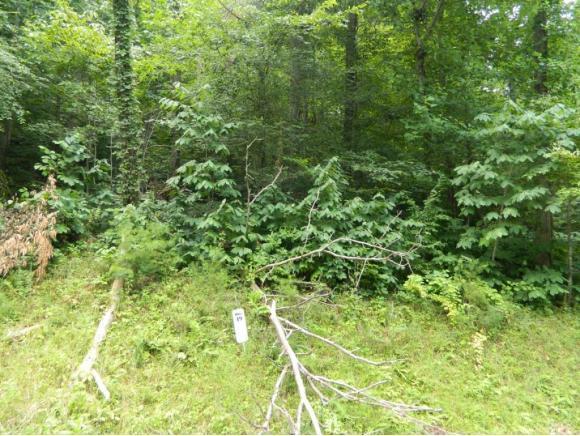TR39 Five Oaks Circle, Whitesburg, TN 37891 (MLS #395385) :: Highlands Realty, Inc.