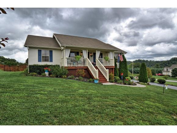 300 Caden Way, Piney Flats, TN 37686 (MLS #396034) :: Highlands Realty, Inc.