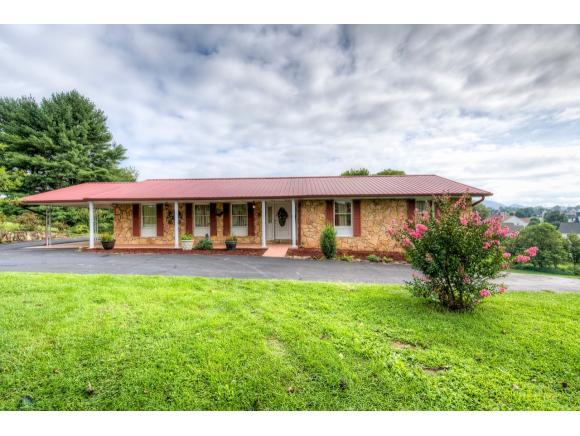 377 Sycamore Drive, Bluff City, TN 37618 (MLS #396040) :: Highlands Realty, Inc.