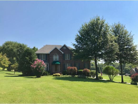 401 Mountain View Court, Blountville, TN 37617 (MLS #396130) :: Highlands Realty, Inc.