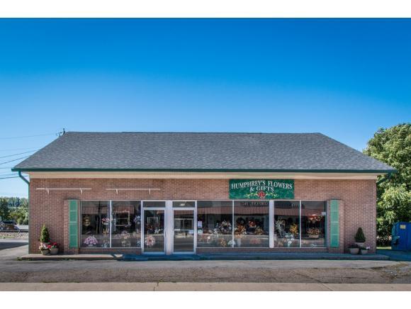 610 Main Street W #0, Abingdon, VA 24210 (MLS #396218) :: Conservus Real Estate Group