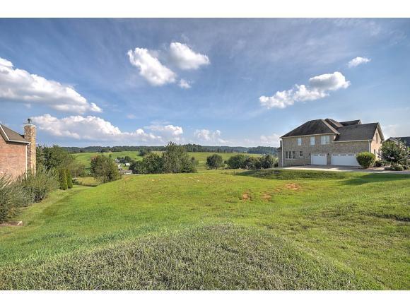 141 Laurel Ridge Drive, Jonesborough, TN 37659 (MLS #396338) :: Conservus Real Estate Group