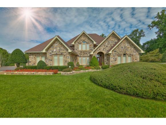 146 Blackthorn Drive, Jonesborough, TN 37659 (MLS #396451) :: Conservus Real Estate Group