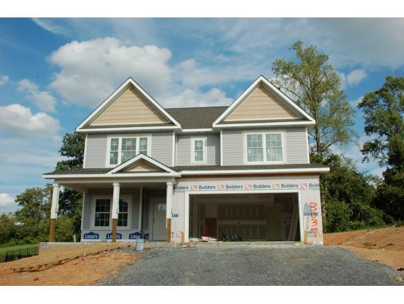 3037 Calton Hill, Kingsport, TN 37664 (MLS #396577) :: Conservus Real Estate Group