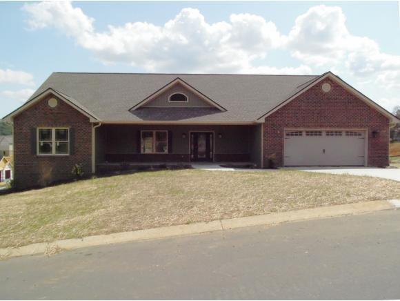 1074 Savin Falls, Gray, TN 37615 (MLS #397101) :: Conservus Real Estate Group