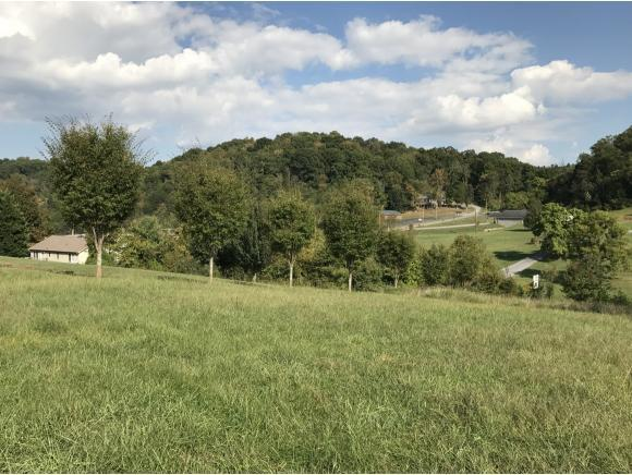 1025 Fiddlers Way, Kingsport, TN 37664 (MLS #397275) :: Highlands Realty, Inc.