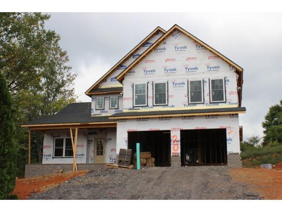 203 Riverwatch Circle, Kingsport, TN 37660 (MLS #397284) :: Conservus Real Estate Group