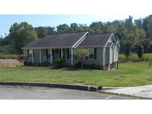 179 Hunters Run Lane, Mount Carmel, TN 37645 (MLS #397320) :: Conservus Real Estate Group