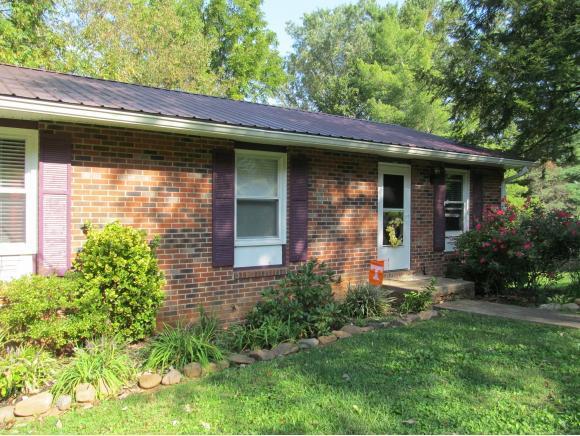 141 Carroll Drive, Gray, TN 37615 (MLS #397325) :: Conservus Real Estate Group