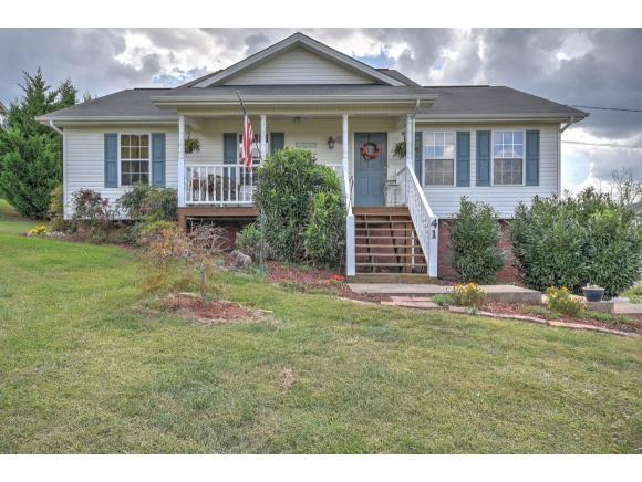 41 Martins Glen Court, Gray, TN 37615 (MLS #397398) :: Conservus Real Estate Group